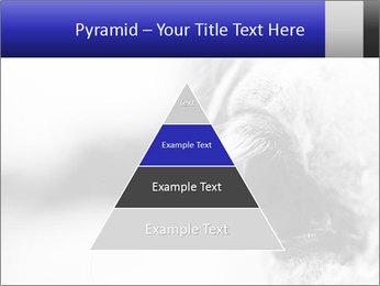 Horse'e eye PowerPoint Template - Slide 30