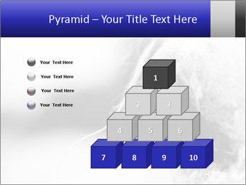 Horse'e eye PowerPoint Template - Slide 31