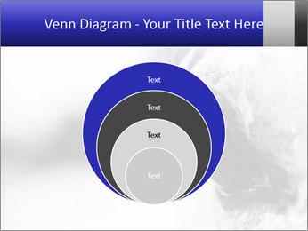 Horse'e eye PowerPoint Templates - Slide 34