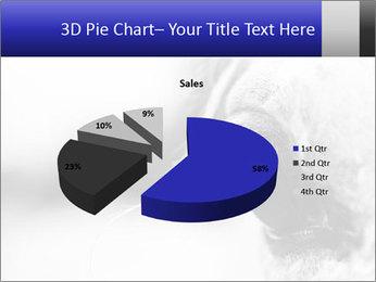 Horse'e eye PowerPoint Template - Slide 35