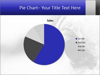 Horse'e eye PowerPoint Template - Slide 36