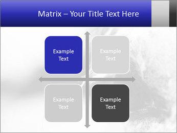 Horse'e eye PowerPoint Template - Slide 37