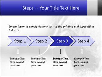 Horse'e eye PowerPoint Template - Slide 4