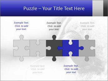 Horse'e eye PowerPoint Template - Slide 41