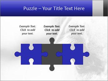 Horse'e eye PowerPoint Template - Slide 42