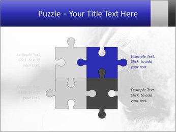 Horse'e eye PowerPoint Template - Slide 43