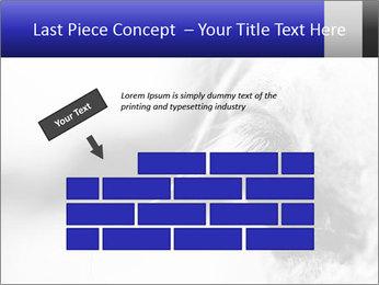 Horse'e eye PowerPoint Template - Slide 46