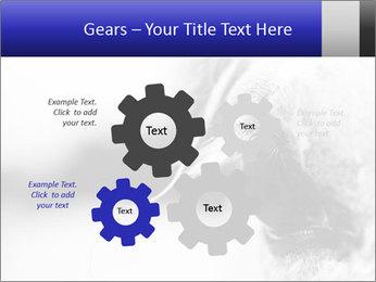 Horse'e eye PowerPoint Templates - Slide 47