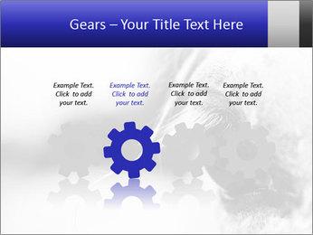Horse'e eye PowerPoint Template - Slide 48