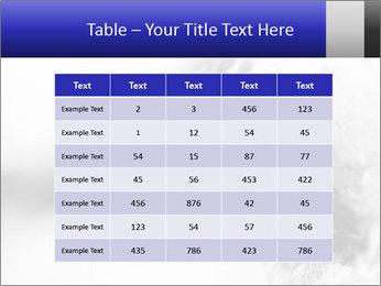 Horse'e eye PowerPoint Template - Slide 55