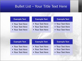 Horse'e eye PowerPoint Templates - Slide 56