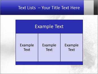 Horse'e eye PowerPoint Template - Slide 59