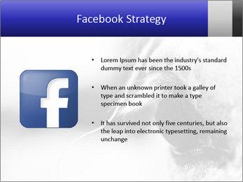 Horse'e eye PowerPoint Template - Slide 6