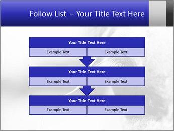 Horse'e eye PowerPoint Templates - Slide 60