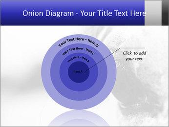 Horse'e eye PowerPoint Template - Slide 61