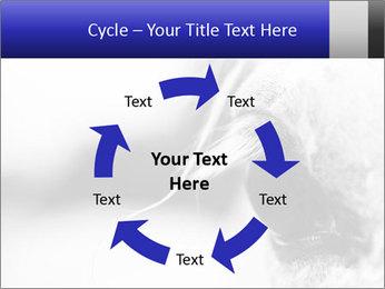 Horse'e eye PowerPoint Template - Slide 62