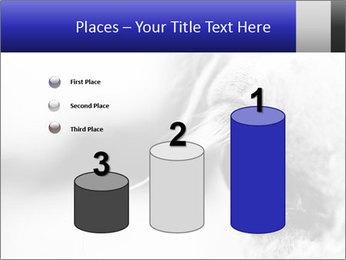 Horse'e eye PowerPoint Template - Slide 65