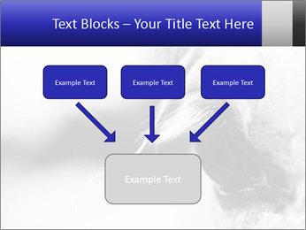 Horse'e eye PowerPoint Template - Slide 70