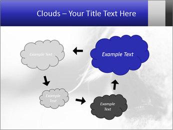 Horse'e eye PowerPoint Templates - Slide 72
