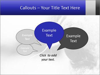 Horse'e eye PowerPoint Template - Slide 73