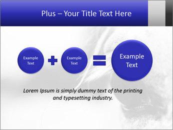 Horse'e eye PowerPoint Template - Slide 75