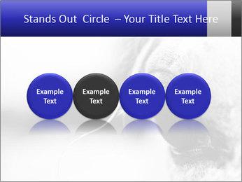 Horse'e eye PowerPoint Template - Slide 76