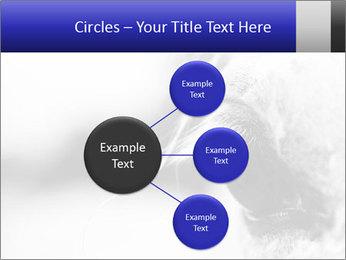 Horse'e eye PowerPoint Template - Slide 79
