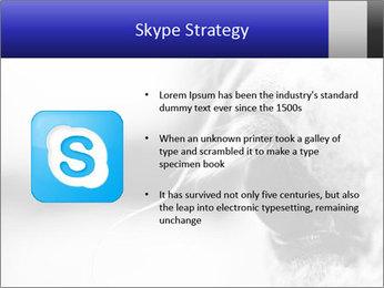 Horse'e eye PowerPoint Template - Slide 8