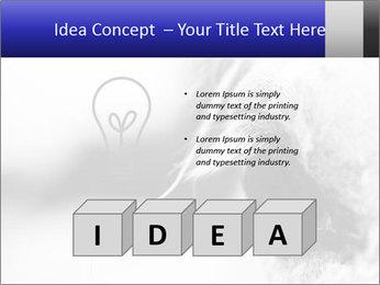 Horse'e eye PowerPoint Template - Slide 80