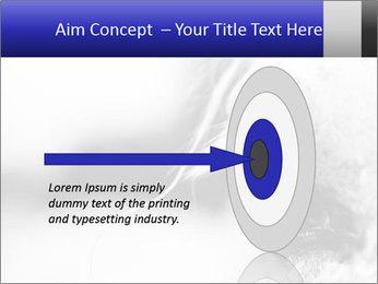 Horse'e eye PowerPoint Template - Slide 83
