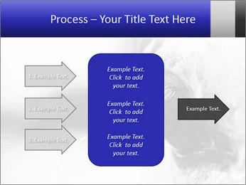 Horse'e eye PowerPoint Template - Slide 85