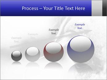 Horse'e eye PowerPoint Template - Slide 87