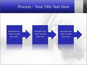 Horse'e eye PowerPoint Template - Slide 88