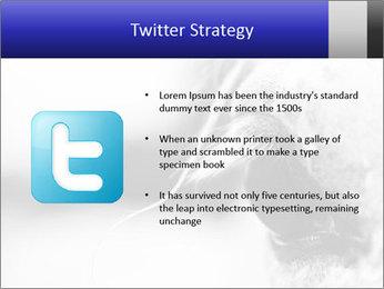 Horse'e eye PowerPoint Template - Slide 9