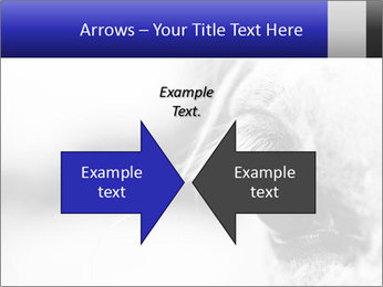 Horse'e eye PowerPoint Templates - Slide 90