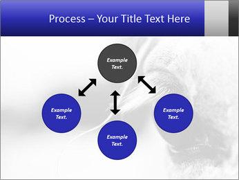 Horse'e eye PowerPoint Template - Slide 91