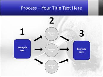 Horse'e eye PowerPoint Template - Slide 92