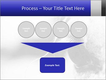 Horse'e eye PowerPoint Template - Slide 93