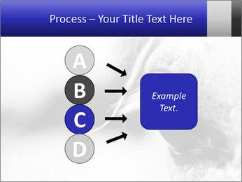 Horse'e eye PowerPoint Template - Slide 94