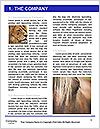 0000092880 Word Templates - Page 3