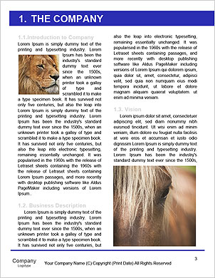 0000092880 Word Template - Page 3