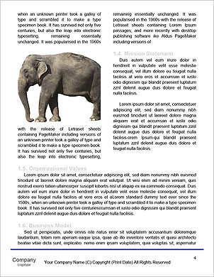 0000092880 Word Template - Page 4