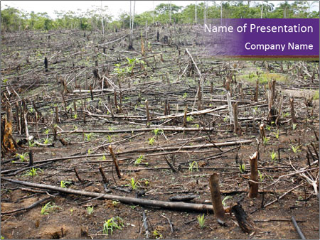 Slash and burn cultivation PowerPoint Templates