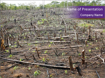 Slash and burn cultivation PowerPoint Template - Slide 1
