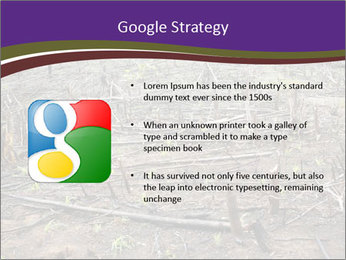 Slash and burn cultivation PowerPoint Templates - Slide 10