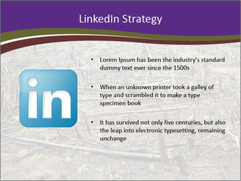 Slash and burn cultivation PowerPoint Template - Slide 12