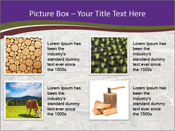 Slash and burn cultivation PowerPoint Template - Slide 14