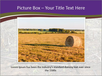 Slash and burn cultivation PowerPoint Templates - Slide 16