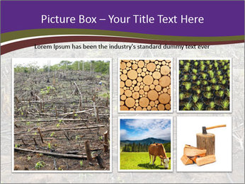 Slash and burn cultivation PowerPoint Template - Slide 19