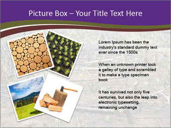 Slash and burn cultivation PowerPoint Template - Slide 23